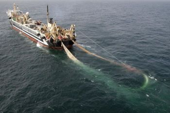 Photo Credit: ABC News: http://www.abc.net.au/news/2012-11-19/supertrawler-decision/4380016